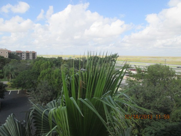 Alligator alley and the beginning of the central everglades are just in view from our balcony.