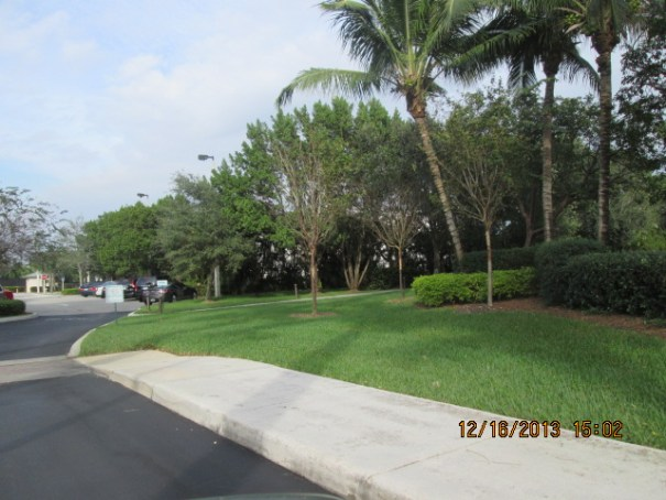 Manicured Weston.  Mike our driver told us several of the areas we can't see have multi-million dollar homes.  Dan Marino lives here as well.