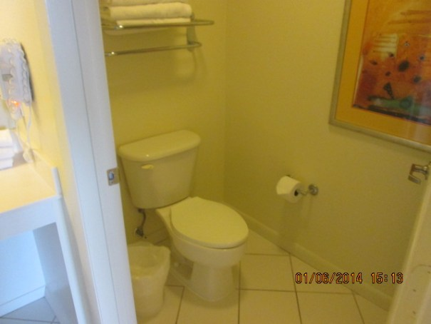 Master toilet.
