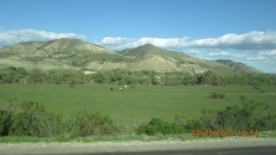 It was good to drive the 95 miles up the Salinas Valley, such a rock of civilization.