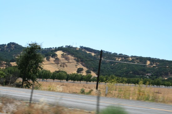 Pretty hills outside of Vacaville.