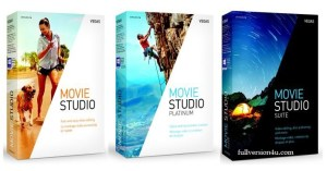 movie studio crack