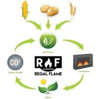 Regal Flame Signature Ventless Bio Ethanol Fireplace Fuel ...