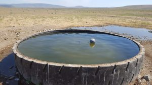 Cowgill Well