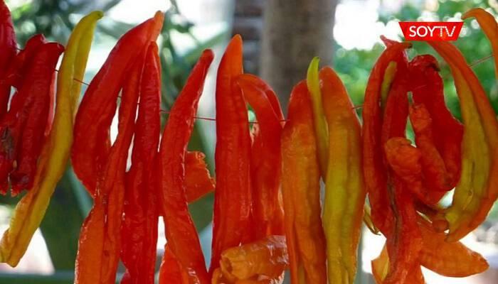 Η κατανάλωση καυτερής πιπεριάς μειώνει τους θανάτους από έμφραγμα και εγκεφαλικό