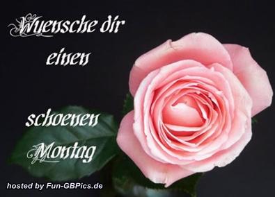 Schnen Montag GB Bild  Facebook BilderGB Bilder