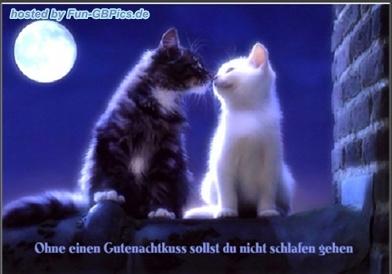 Gute Nacht Whatsapp Bilder Gru  Facebook BilderGB