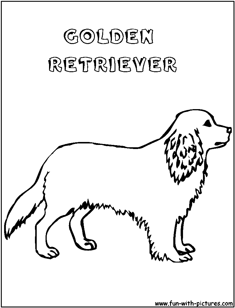 Goldenretriever Coloring Page