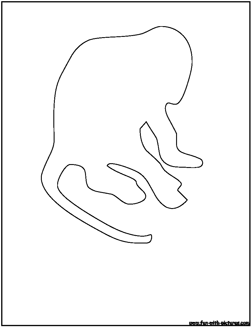 Cartoon Monkey Outline