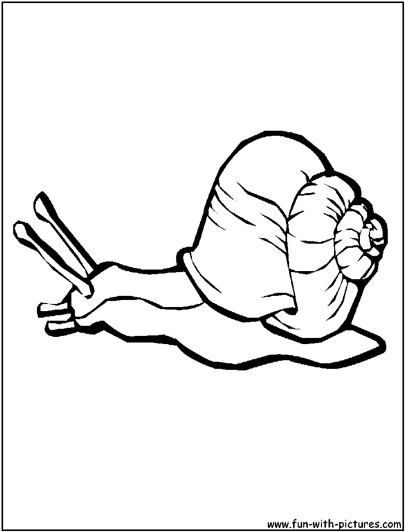 snails Colouring Pages