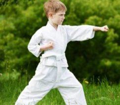 bambino karate