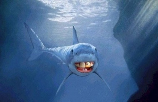 Funny Animated Wallpapers Sharks With Human Teeth 15 Photos Funcage