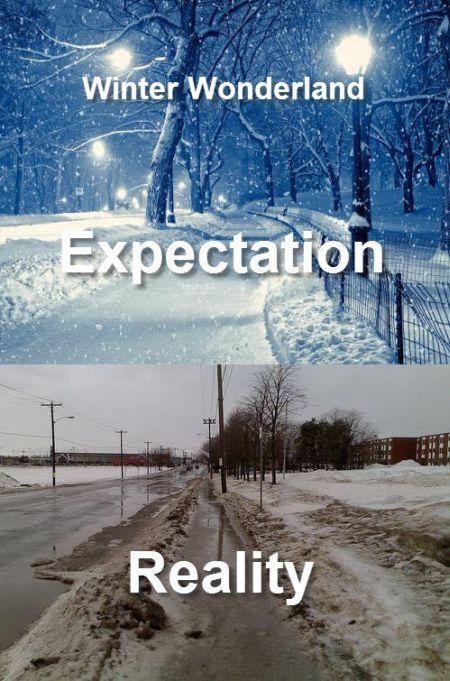 Expectations Vs Reality 38 Photos Funcage