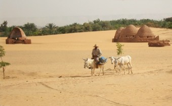 The-water-table-is-falling-in-Egypts-desert-oases-raising-questions-of-sustainability_Cam-McGrath-629x420-629x420