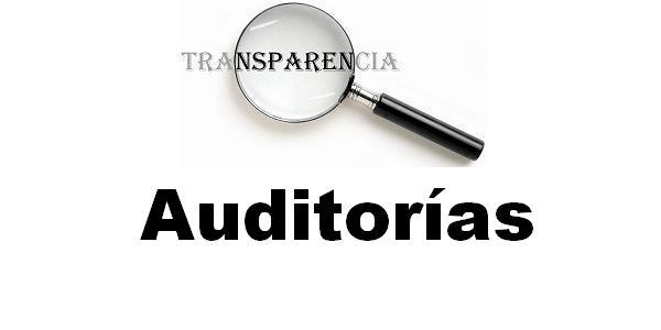 Cuentas anuales con informe de auditoría 2015