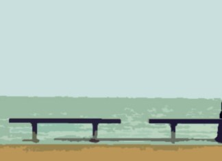Informe de la soledad en España