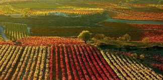 Euskadi, Navarra, Rioja, líos entre vecinos