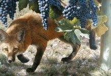 Las uvas están verdes en Gibraltar