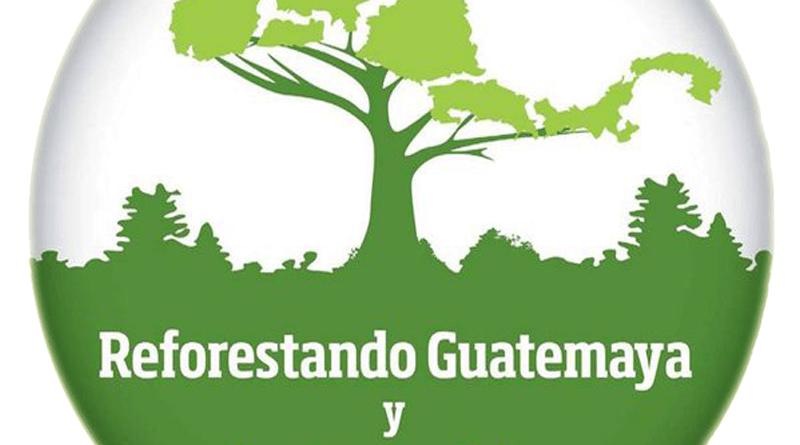 Comunicado de prensa: Reforestando Guatemaya y Centroamerica REFCA 2016