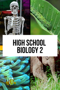Copy of Online Biology Course