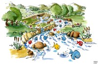 Saving Indias Rivers and Riverine Ecosystems  Fundamatics