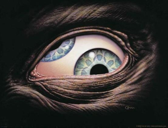 The eye