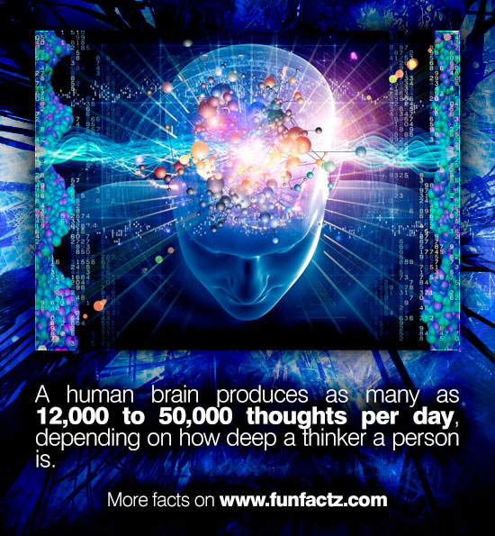 A human brain produces as many as 12000 to 50000