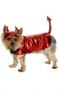 Devil Dog Fancy Dress Costume (Halloween)