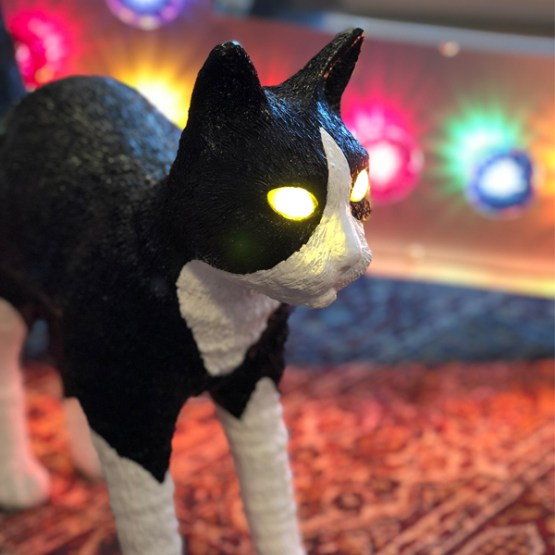 jobby cat lamp