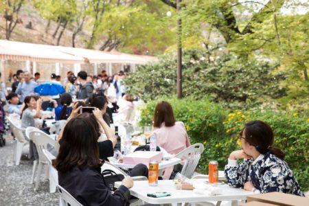 韓国ソウルで花見を満喫!桜が綺麗なおすすめスポット7選!グランデウォーカーヒルソウル