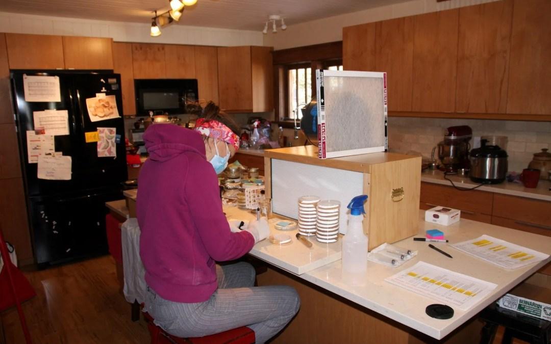 Tara working