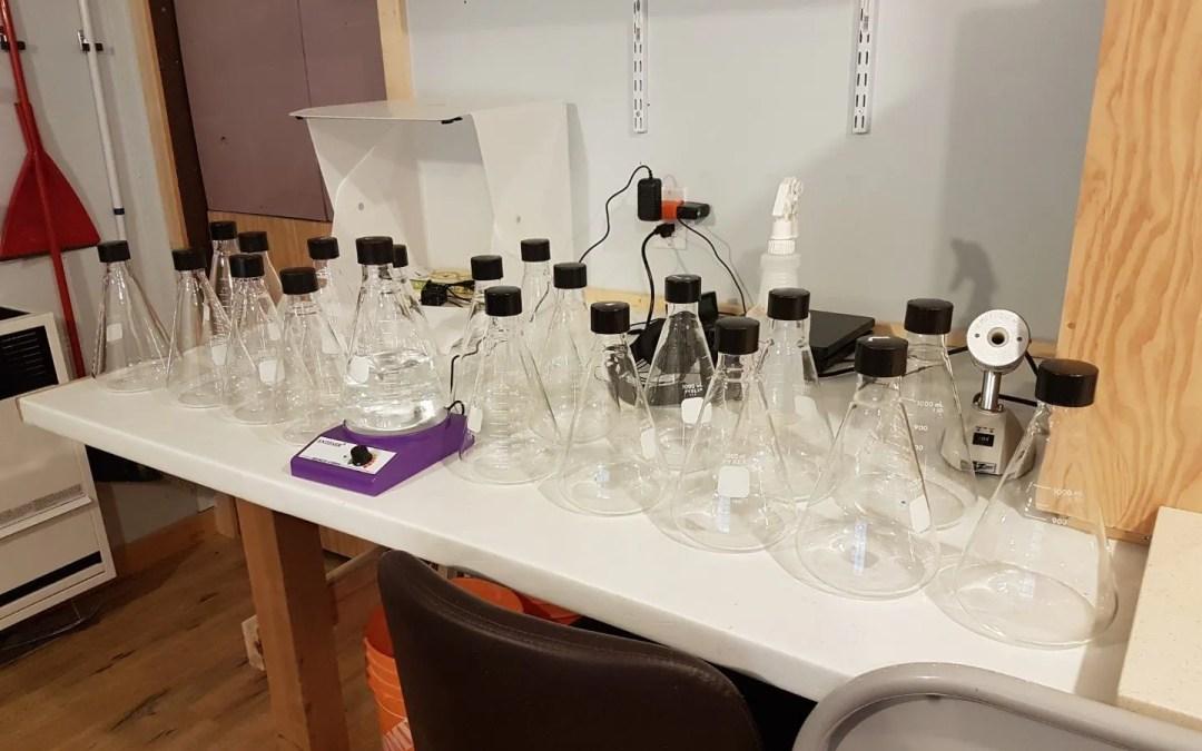Getting ready – liquid spawn is on it's way!