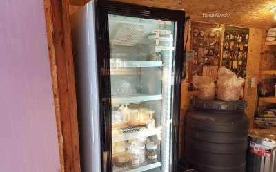 New fridge!