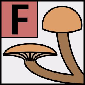 FFF-Logo