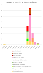Count of Russula mushrooms by Species and Time