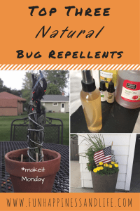 Natural homemade bug repellents are a great alternative to using DEET. These plants and essential oils can ward of mosquitoes and other biting insects so you can enjoy your summer without all the toxins