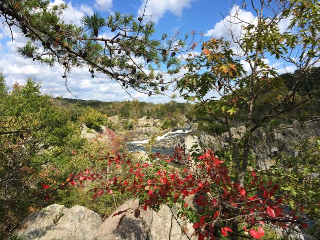 8 Great Fall Hikes in Northern Virginia