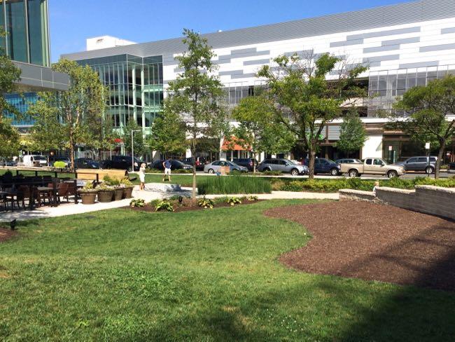 Mosaic District green, Fairfax Virginia