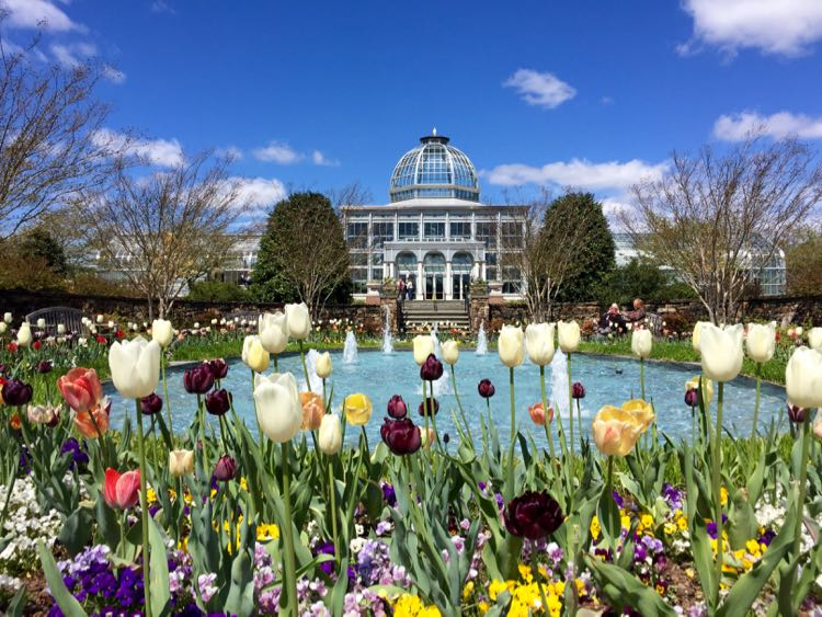 Lewis Ginter Botanical Garden tulips and Conservatory, Richmond Virginia
