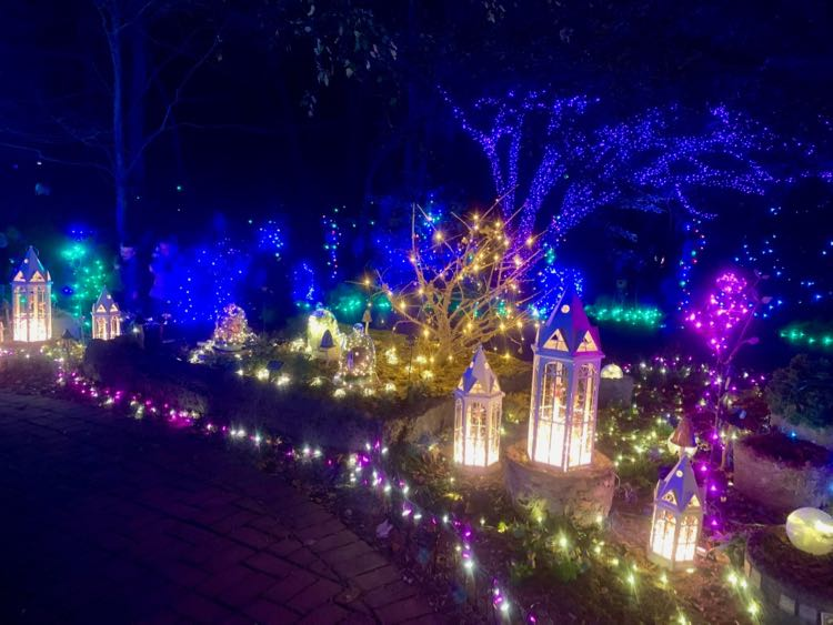 holiday lights in the northern virginia