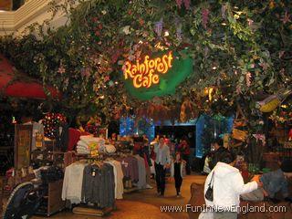 Rainforest Cafe  wwwFunInNewEnglandcom
