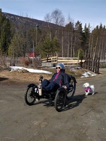 Sykkeltest med hund