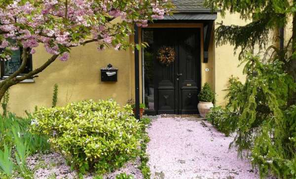 budget friendly landscaping projects