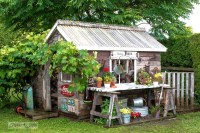 Rustic shed reveal with sawhorse potting bench and old ...