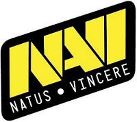 NaVi logo sm