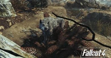 Fallout 4 Far Harbor Dog Companions Locations