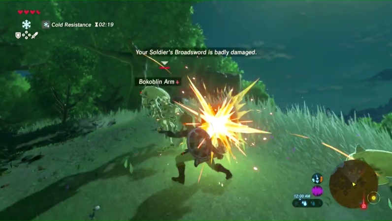 The Legend of Zelda Breath of the Wild Review - Graphics