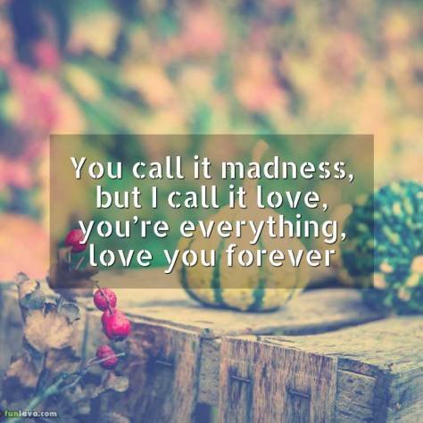 but-i-call-it-love