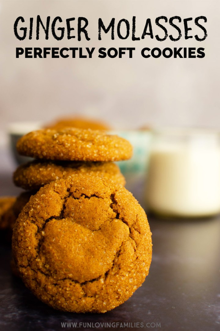 soft ginger molasses cookies recipe