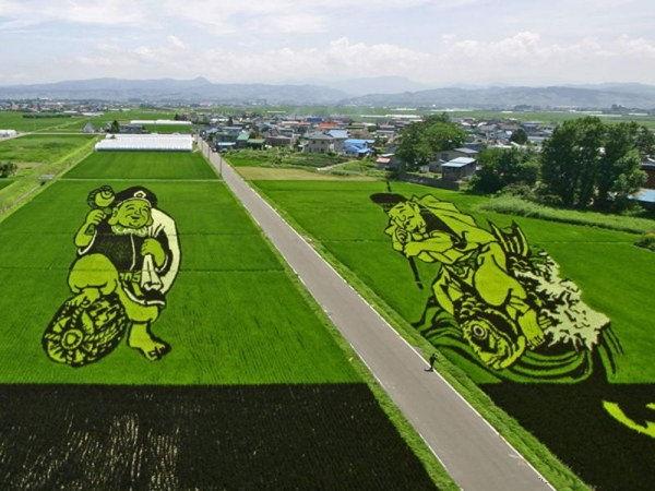 rice paddy art (16)